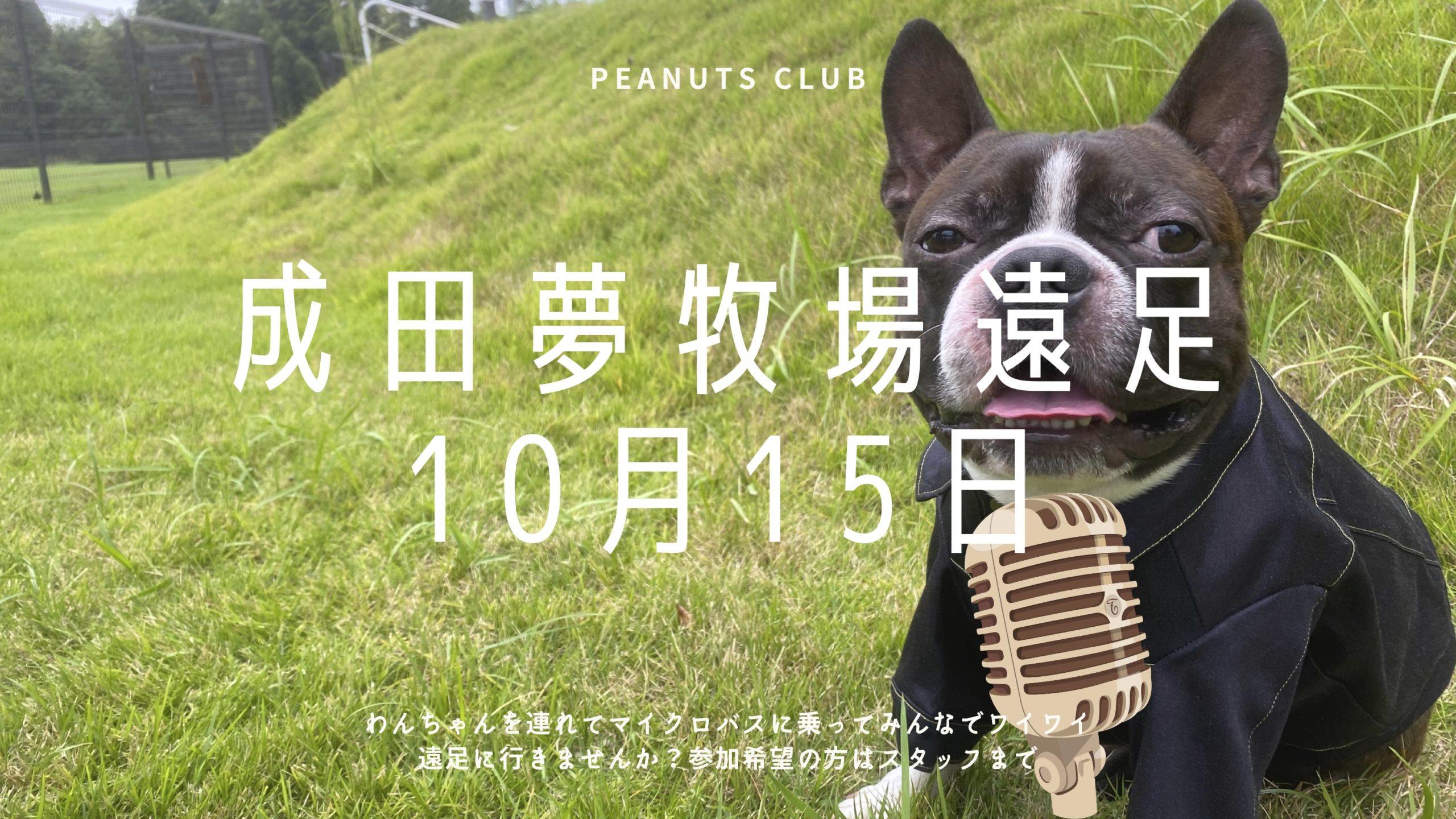 10/15 バスツアー(成田ゆめ牧場)