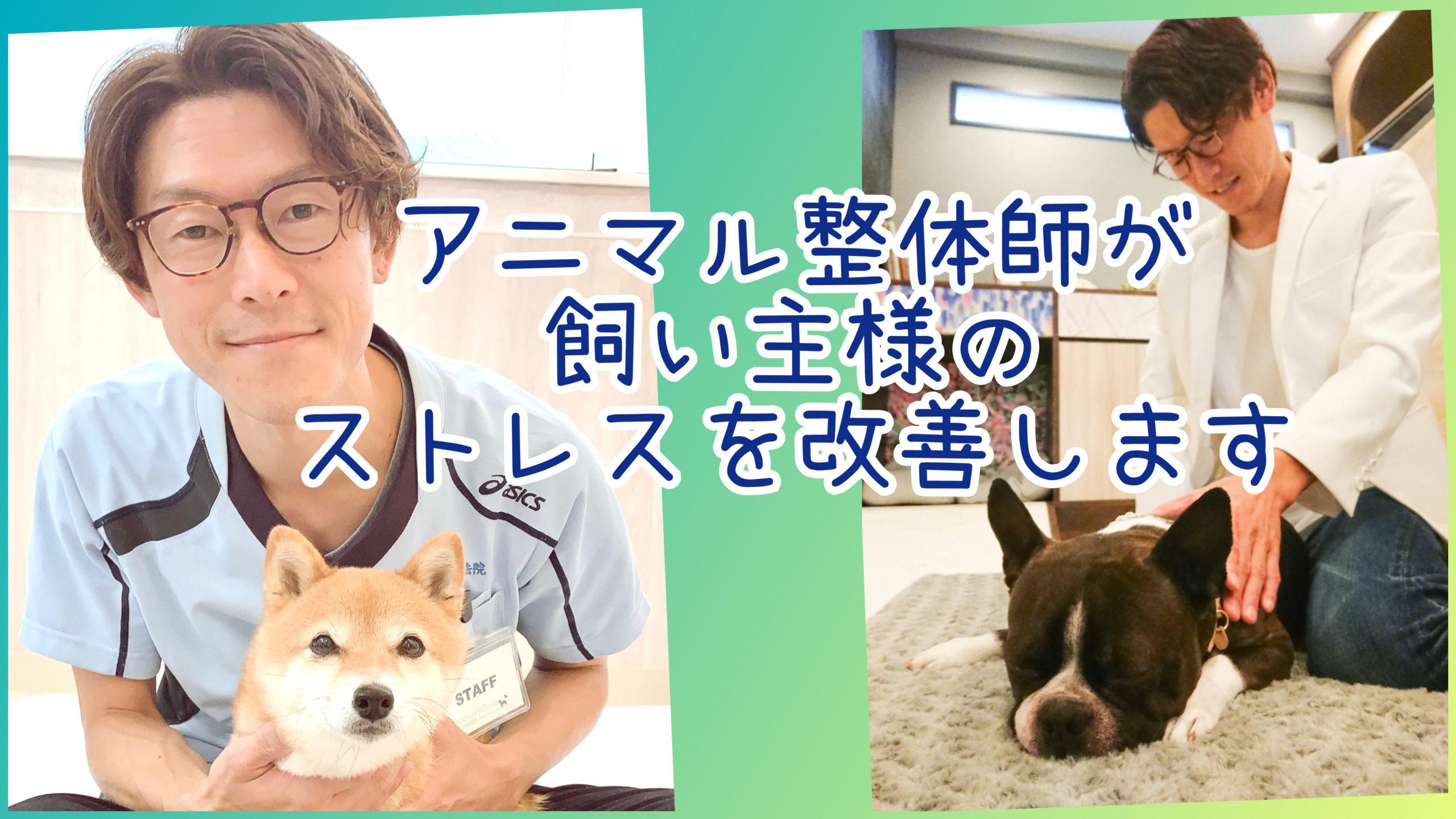 10/19 アニマル整体師が飼い主様のストレスを改善します
