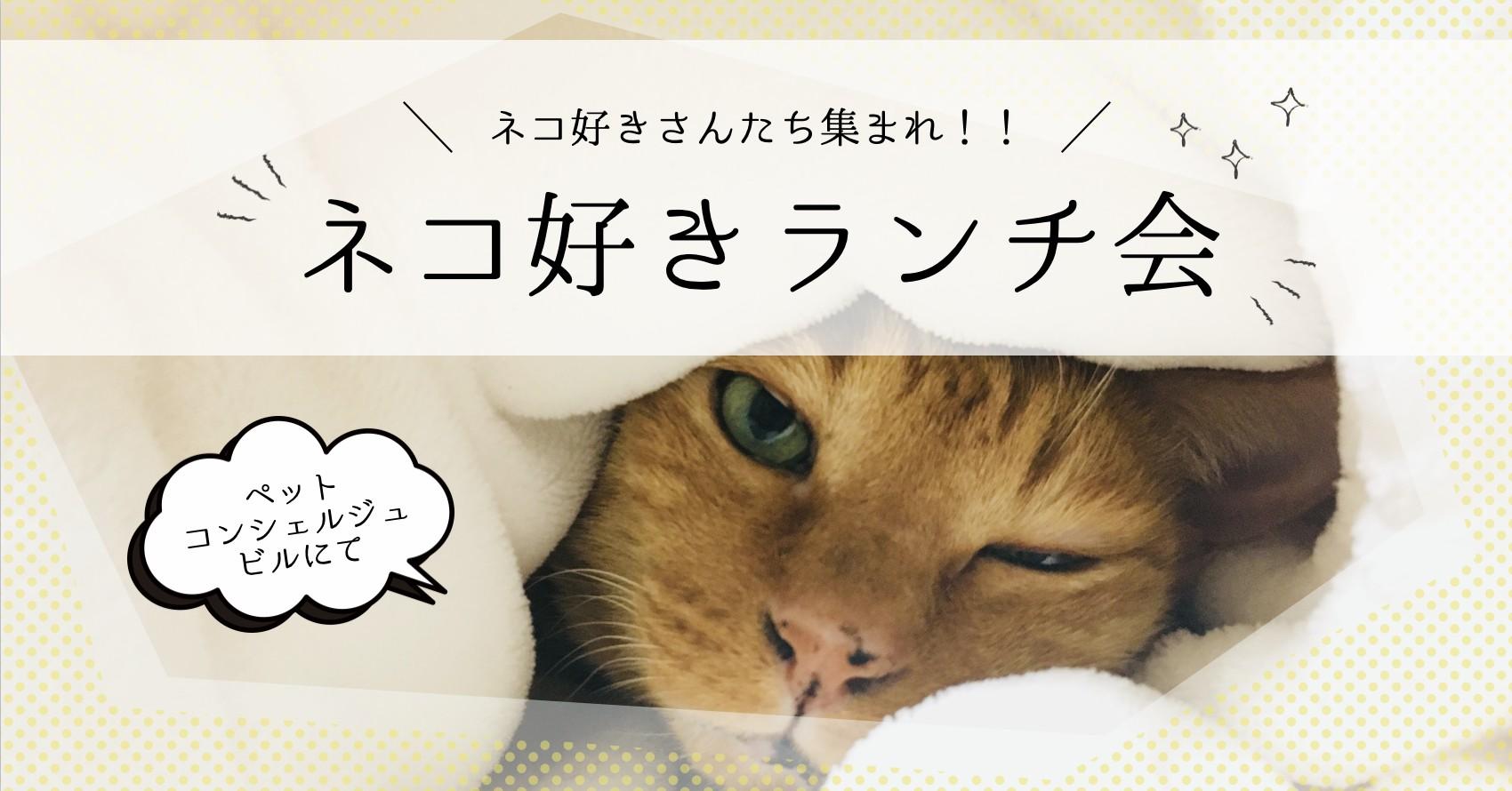 10/18 猫好きランチ会