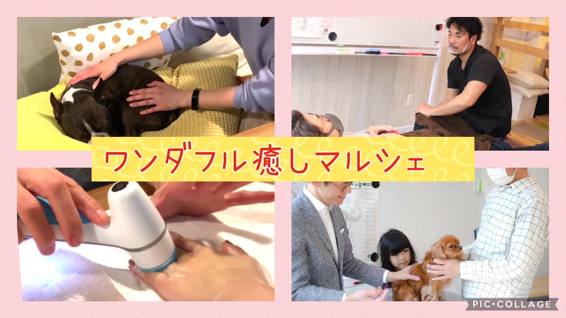 3/18 ワンダフル癒しマルシェ
