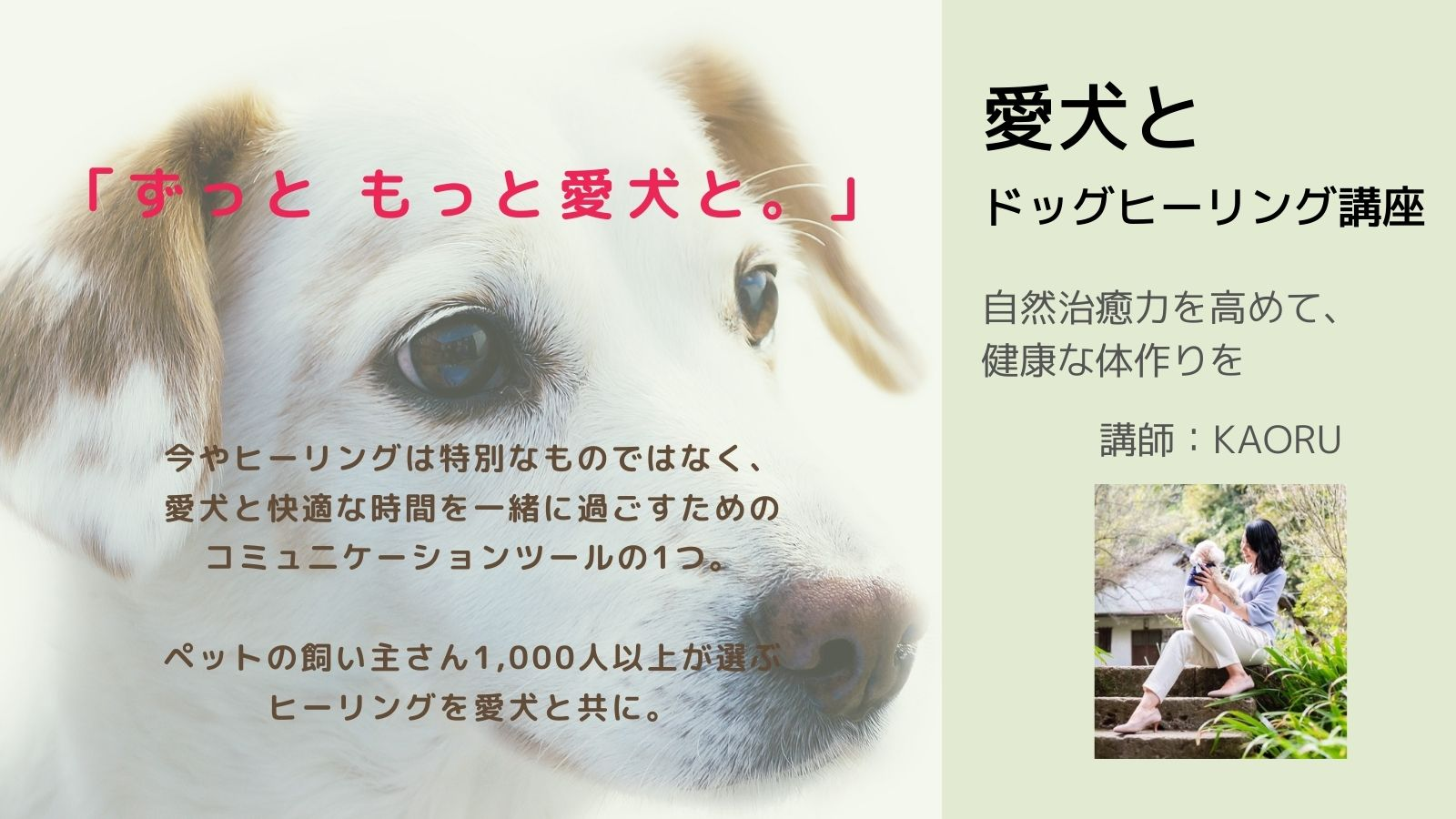 9/19 ※オンラインあり 愛犬を病気にしない!させない!! ヒーリング講座
